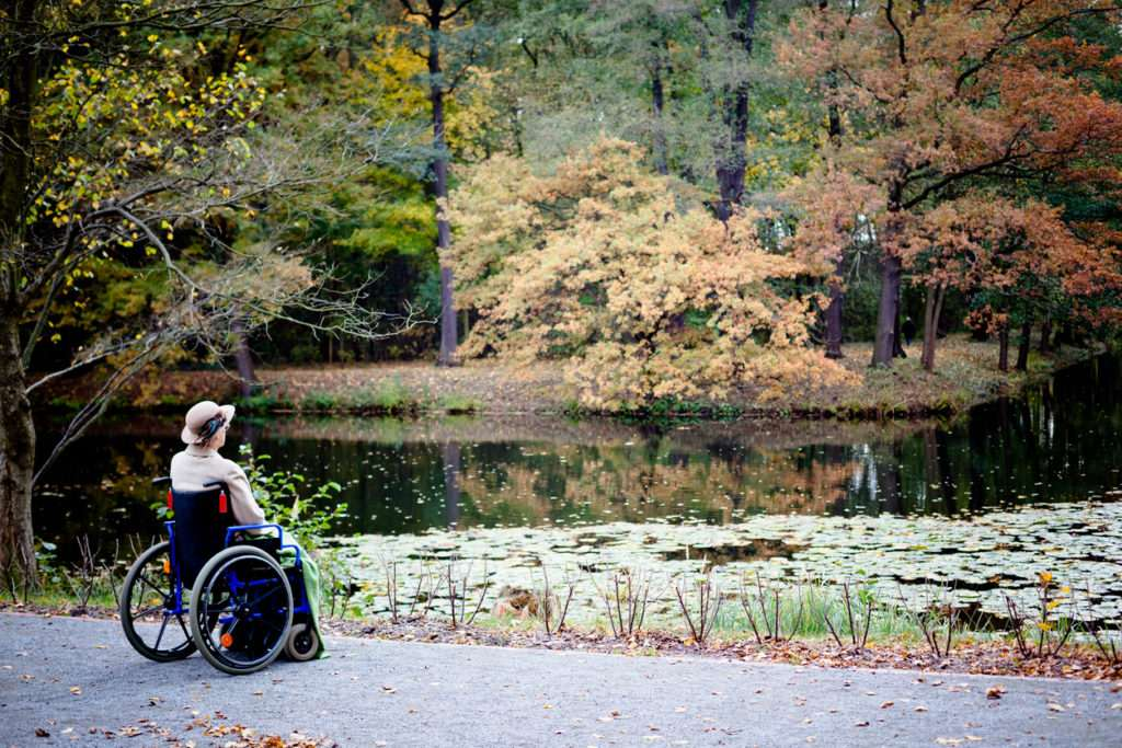 Disabled Senior woman in wheelchair alone in autumn park